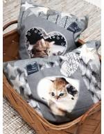 Kissanpojat