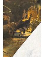 Dinosaurus, college