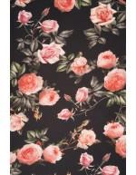Ruusuilla